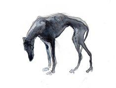 Needle Felted Animals, Felt Animals, Abstract Painting Techniques, Dog Sculpture, Lurcher, Animal Masks, Fabric Art, Dog Art, Art Inspo