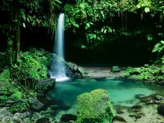 Dominica - known as the nature island - is another beautiful place