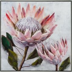 Pretty Protea Framed Painting on Canvas East Urban Home Acrylic Painting Canvas, Canvas Artwork, Painting Frames, Artwork Prints, Painting Prints, Canvas Wall Art, Protea Art, Protea Flower, Art Floral