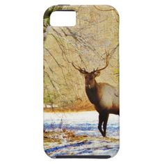 > frontal Bull elk in Snow Cover For iPhone 5/5S