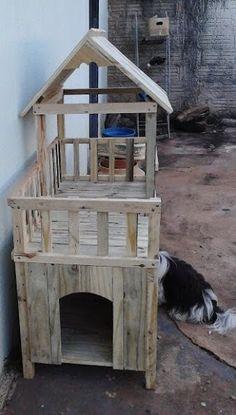 Casa cachorro - 101902409741736129498 - Álbuns da web do Picasa