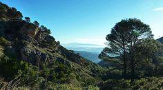Parque Natural de la Sierra de las Nieves (Málaga) Sierra, Travel Inspiration, Spain, Lifestyle, Nature, Wanderlust, Snow, Towers, Cities