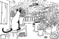 Thirty Days in Athens- Day 7- Cat of the seventh floor-