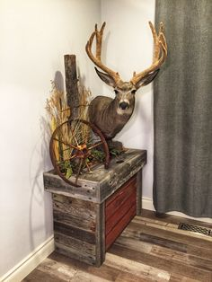 How to Decorate with Deer Antlers . How to Decorate with Deer Antlers . Hunting Bedroom, Deer Hunting Decor, Deer Head Decor, Taxidermy Decor, Taxidermy Display, Deer Skulls, Deer Antlers, Deer Mount Decor, Deer Mounts