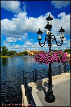 Example lamp post + hanging flowers from Epcot Center