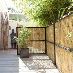 Bambu avskärmning Canisse bambou L.3 x H.1,50 m - CASTORAMA
