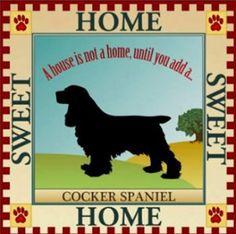 Cocker Spaniel....