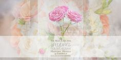 Weddings North Carolina Journal, Weddings, Elopements, Honeymoons • http://www.weddingsnorthcarolina.us/information/weddings-north-carolina-journal • Historic Lodging, Gourmet Dining, Memorable Weddings. Here you will find the most recent articles published on Weddings North Carolina.