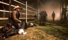 Image result for australian bushland rodeo