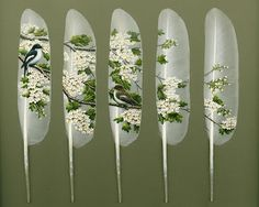 "Painted swan feathers by Ian Davie~ ""The arrival of the Pied flycatchers and Hawthorn blossom coincides each Spring making a welcome sight. Here a pair of flycatchers are captured amongst the blossom making a subtle and fitting painting."""
