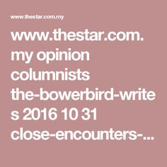 www.thestar.com.my opinion columnists the-bowerbird-writes 2016 10 31 close-encounters-of-the-spiritual-kind-are-muslims-now-less-open-to-conversations-with-others-about