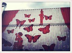 greenhouse sydney, joost