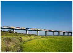 https://flic.kr/p/MN3rkR   Alcáçer do Sal 16-08-15   Locomotiva Eléctrica nº5600, comboio de contentores nº69810