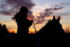 Please vote for this entry in Noworoczny konkurs fotograficzny. Silhouette, Horses, Animals, Art, Art Background, Animales, Animaux, Kunst, Animal