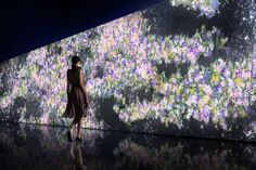 Growth and Death of Flowers Visualized in Real-Time Installation