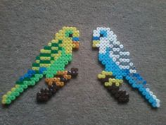 My budgies perler beads by thousten on deviantART