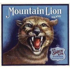 Riverside Mountain Lion Orange Citrus Fruit Crate Box Label Art Print