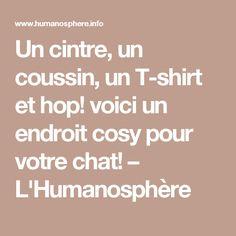 Un cintre, un coussin, un T-shirt et hop! voici un endroit cosy pour votre chat! – L'Humanosphère