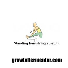 Standing Hamstring Stretch - Grow Taller Exercises