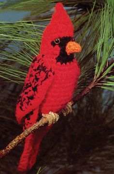 Ravelry: Cardinal pattern by Barbara Anderson