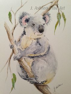 Original watercolor painting of a Koala - Australian animal, koala painting, original art, Australia, animal painting, bear, nursery art by JAshtonArt on Etsy https://www.etsy.com/listing/213171988/original-watercolor-painting-of-a-koala