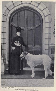 Her Majesty Queen Alexandra with borzoi and Japanese chin