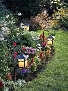 Solar lights for the garden.. Or surrounding the border