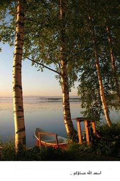 Sunrise at on midsummer in Finland. this is why my ancestors stayed in Minnesota Sunrise at on midsummer in Finland. this is why my ancestors stayed in Minnesota Beautiful World, Beautiful Places, Peaceful Places, Amazing Nature, Belle Photo, Wonders Of The World, Places To Go, Scenery, Photos