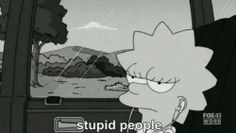 all people is stupid