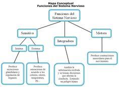Esquema Del Mapa Conceptual
