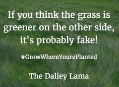 Most of the time it's best to make your grass greener! #stayplanted #workhard