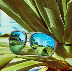 Mirrored & blue shades = a summer must-have! Do you have your #summersunnies from #sunglasshut yet? #ROSCHouston #SummerShades