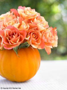 Sandra Kaminski  #Autumn #two toned roses #pumpkin #Autumn wedding #table decoration