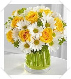 Papatya ile sarı güller