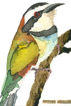 Bird by carolkroll on Etsy