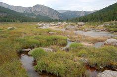 MongolIan Rivers - Google Search
