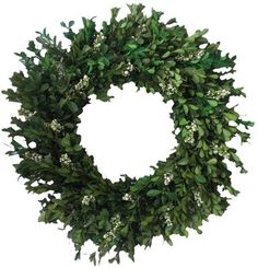 boxwood wreath with pretty little white flower/berry things