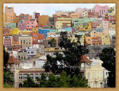 """A cidade começou a expandir-se no século XVII pelas ladeiras que delimitam a faixa costeira, os chamados """"riscos""""."""