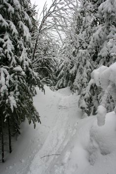 Sentier, mont Ouareau, Québec,avril 2017 Avril 2017, Snow, Outdoor, Pathways, Outdoors, Outdoor Games, Human Eye