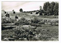 Sør-Trøndelag fylke Røros kommune Brekken Brekkebygd 1956 Utg Kristi