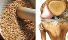 Ποιοι είναι οι σπόροι που αναγεννούν τους τένοντες και εξαφανίζουν τους πόνους στα γόνατα
