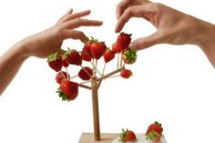 Among other things, I am obsessed with cute little presentations for the hors d'oeuvres I never make (to feed the guests I never invite over). This ridiculous Arbre à manger € via Made In Design). Modern Fruit Bowl, Fruit Holder, Fruit Creations, Diy Adult, Branch Decor, Food Design, Design Design, Interior Design, Fruit Trees