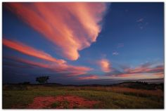 Pink Clouds Over Limpopo, South Africa