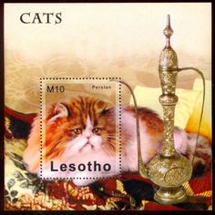 Persian Cat   postage stamp, Lesotho