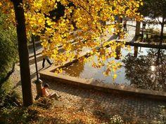 Parc de Belleville in paris