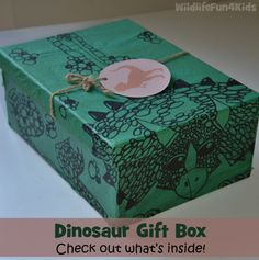 Dinosaur Gift Box idea. Awesome gift for dino mad kids!