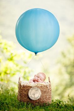 Ah this would be so cute for my dad since he used to fly :) special delivery - newborn in hot air balloon!