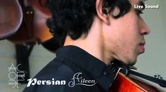 Aileen Musical Instruments, Professional Viola Supplier