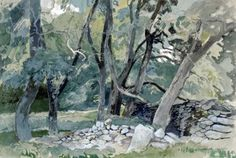 Stone Wall in the Woods, Wales. Watercolour with pen and ink by Charles Knight