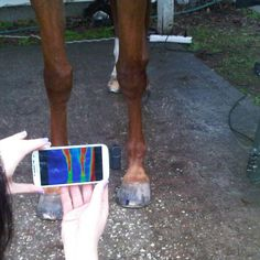 A GREAT APP COMING TO USE YOUR PHONE WITH THERMAL IMAGING! Have you heard of The iNFRAHORSE APP? COMING SOON!